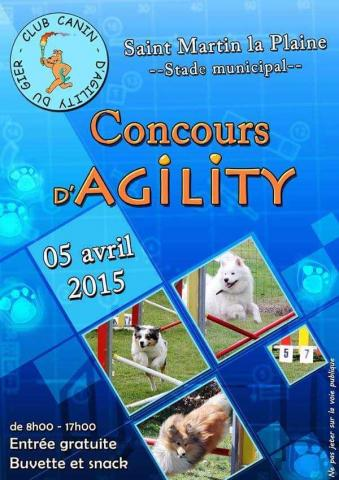 Concours d'agility 2015